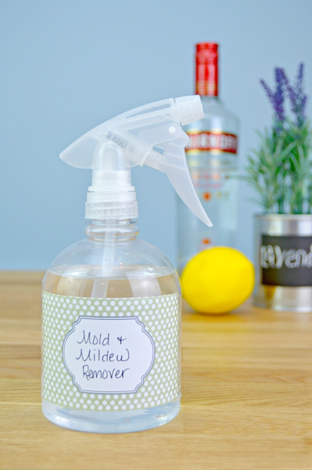 Homemade Mold and Mildew Remover Recipe - This natural mold and mildew killer works great in bathroom showers, for toilets, in refrigerators, basements, garages and anywhere mold and mildew can be found!