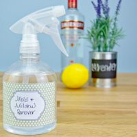 Homemade Mold and Mildew Remover Recipe