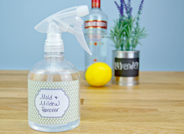 Homemade Mold And Mildew Remover Recipe Mom Real - Bathroom mildew remover
