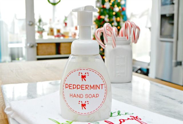 http://www.mom4real.com/wp-content/uploads/2016/12/DIY-Peppermint-foaming-hand-soap.jpg