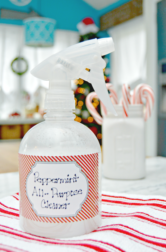 Antibacterial Cleaning Spray