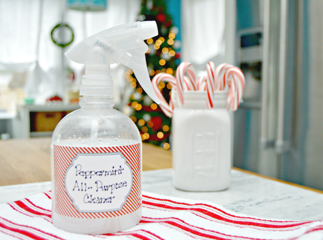 Homemade Peppermint All-Purpose Antibacterial Cleaning Spray