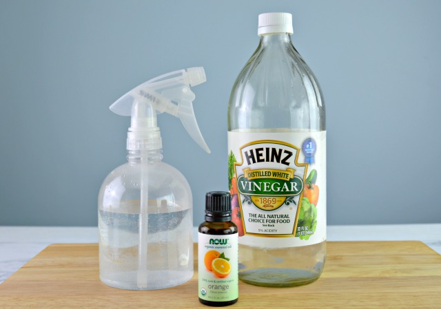Diy Dog Deterrent Spray Helps Stop Indoor Accidents And