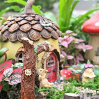 How to Plant a Fairy Garden