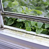 How to Clean Dirty Window Tracks