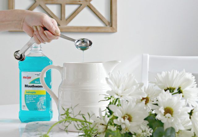 mouthwash-to-revive-cut-flowers